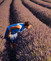 Provence Walking and Hiking Trips